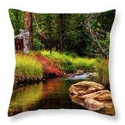 Murdock Basin Autumn Throw Pillow