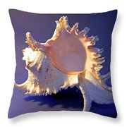 Murex Ramosus Seashell Throw Pillow