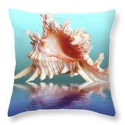 Murex Seashell Reflection Throw Pillow
