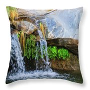 Murray Canon Tranquility II Throw Pillow