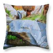 Murray Canyon Falls Throw Pillow