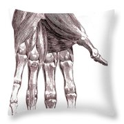 Muscles, Hand, Albinus Illustration Throw Pillow
