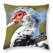 Muscovy Beauty Throw Pillow