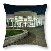Museums Face Entrance Throw Pillow