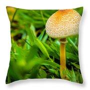 Mushroom And Grass Throw Pillow by Fabio Giannini