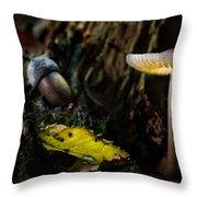 Mushroom Lantern Enchanted Forest Throw Pillow