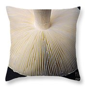 Mushroom Macro Expressionistic Effect Throw Pillow