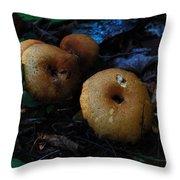 Mushroom Menagerie Throw Pillow