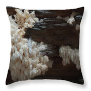 Mushroom On Idaho Log Throw Pillow