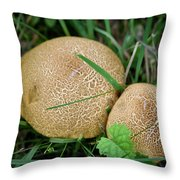 Mushroom Pair Throw Pillow