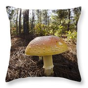 Mushroom Toadstool Throw Pillow