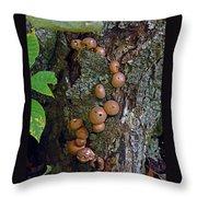 Mushroom Tree Trunk Throw Pillow