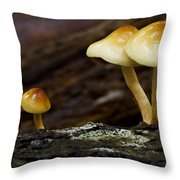 Mushroom Trio Throw Pillow