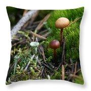 Mushroom Tundra Throw Pillow