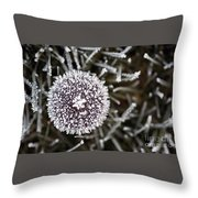 Mushroom With Ice Crystals Throw Pillow