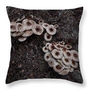 Mushrooms 01 Throw Pillow