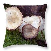 Mushrooms And Sphagnum  Throw Pillow