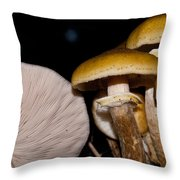 Mushrooms At Sundown Throw Pillow