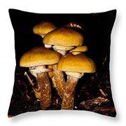 Mushrooms By Night Throw Pillow