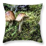 Mushrooms Trio Throw Pillow