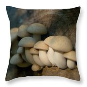 Mushrooms Growing Out Of Dead Tree Throw Pillow