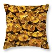 Mushrooms In Spain Throw Pillow