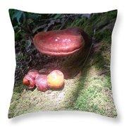 Mushrooms In Spotlight  Throw Pillow