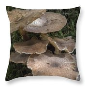 Mushrooms In The Forest Throw Pillow