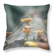 Mushrooms In The Trunk Throw Pillow