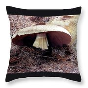 Mushrooms Under Firs Throw Pillow