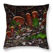 Mushrooms,log And Ferns Throw Pillow