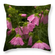 Musk-mallows Refreshed Throw Pillow