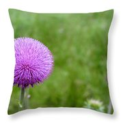 Musk Thistle Bloom Cycle Throw Pillow