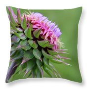 Musk Thistle In Bloom Throw Pillow