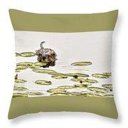 Muskrat Love Throw Pillow