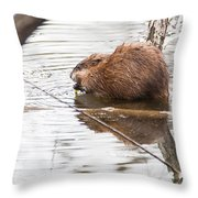 Muskrat Spring Meal Throw Pillow