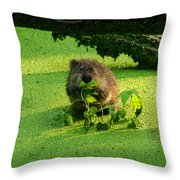 Muskrat Susie Or Muskrat Sam Throw Pillow