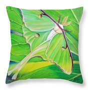 Must Be Dreaming Throw Pillow