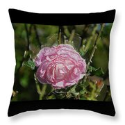 Must Have Been The Roses Throw Pillow
