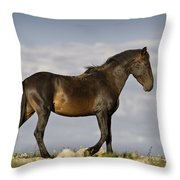 Mustang And Clouds 1 Throw Pillow