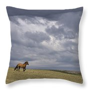 Mustang And Stormy Sky Throw Pillow
