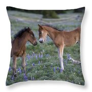 Mustang Foals Throw Pillow