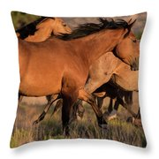 Mustang Run Throw Pillow