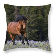 Mustang Stallion And Lupines Throw Pillow
