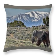 Mustangs In The Sierra Nevada Mountains Throw Pillow