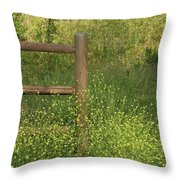 Mustard Grass And Fence At Entrance To Peters Canyon Throw Pillow