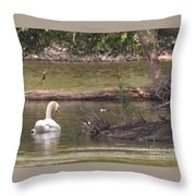 Mute Swan         St. Joe River          June         Indiana Throw Pillow