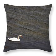 Mute Swan 1 Throw Pillow