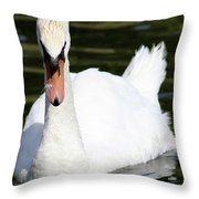 Mute Swan Feathers Of Lake Junaluska North Carolina  Throw Pillow