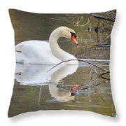 Mute Swan Glide II Throw Pillow